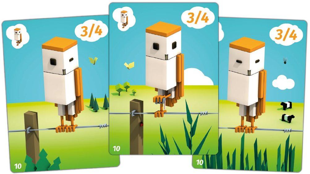 Cubirds chouette jeux toulon lAtaniere