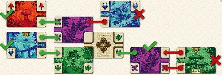 codex naturalis eclate bombyx | Jeux Toulon L'Atanière